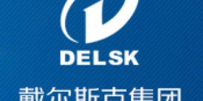 Delsk group